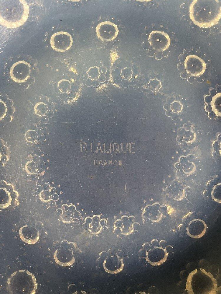 "R.Lalique bowl ""Asters"" bowl, circa 1930 - 4"