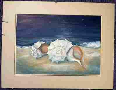 Gouache of shells by Stella Drabkin, 1948