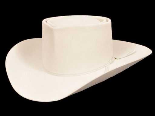 60  Roy Rogers  Resistol Cowboy Hat RR d927b827801
