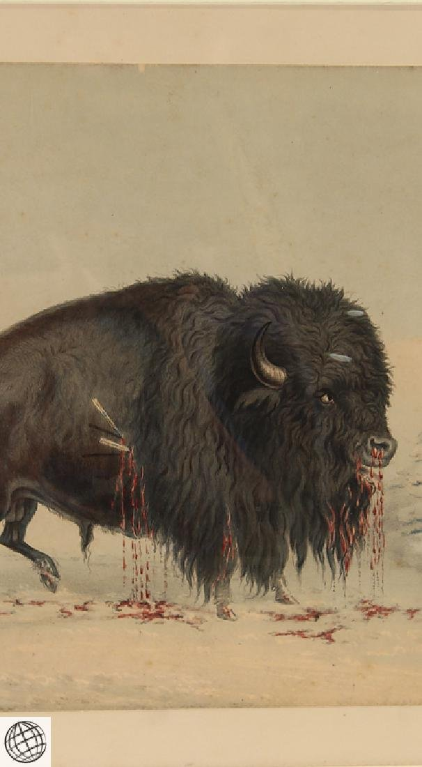 Wounded Buffalo Bull GEORGE CATLIN Bohn 1844 Hand - 4