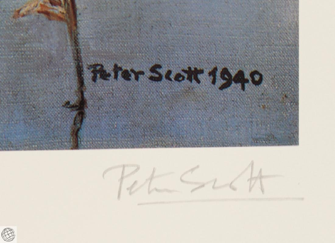 Widgeon Geese SCOTT Sir Peter Markham Color Offset - 5