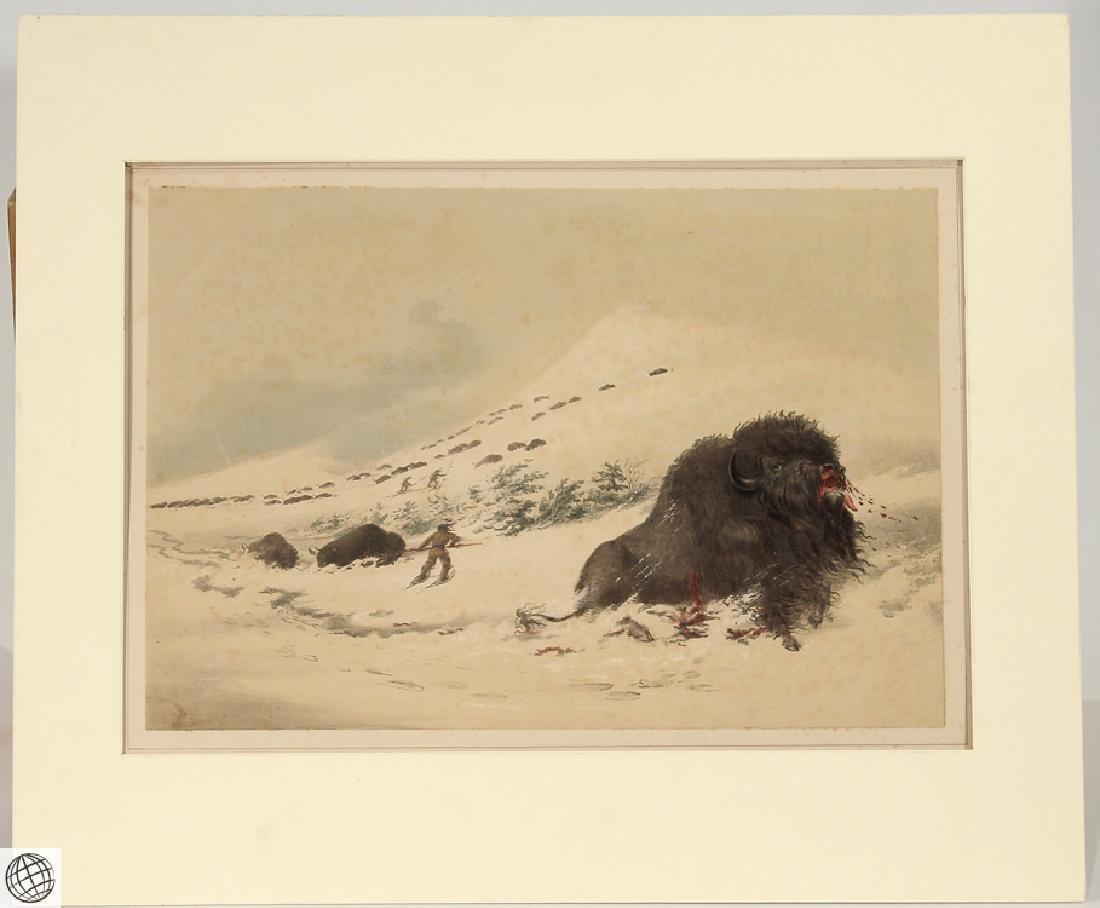 Dying Buffalo Bull GEORGE CATLIN Bohn 1844 Hand Colored