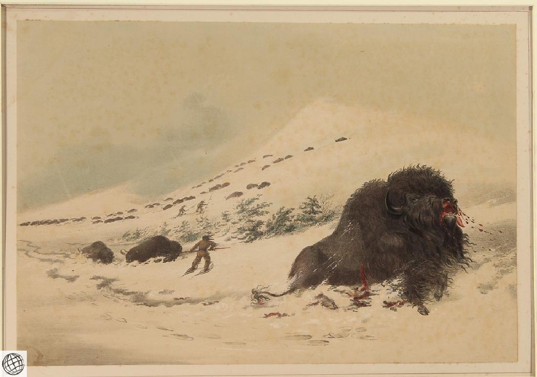 Dying Buffalo Bull GEORGE CATLIN Bohn 1844 Hand Colored - 2