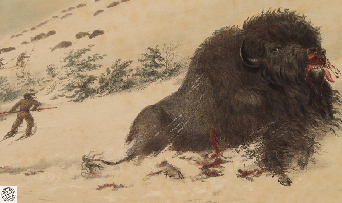 Dying Buffalo Bull GEORGE CATLIN Bohn 1844 Hand Colored - 4