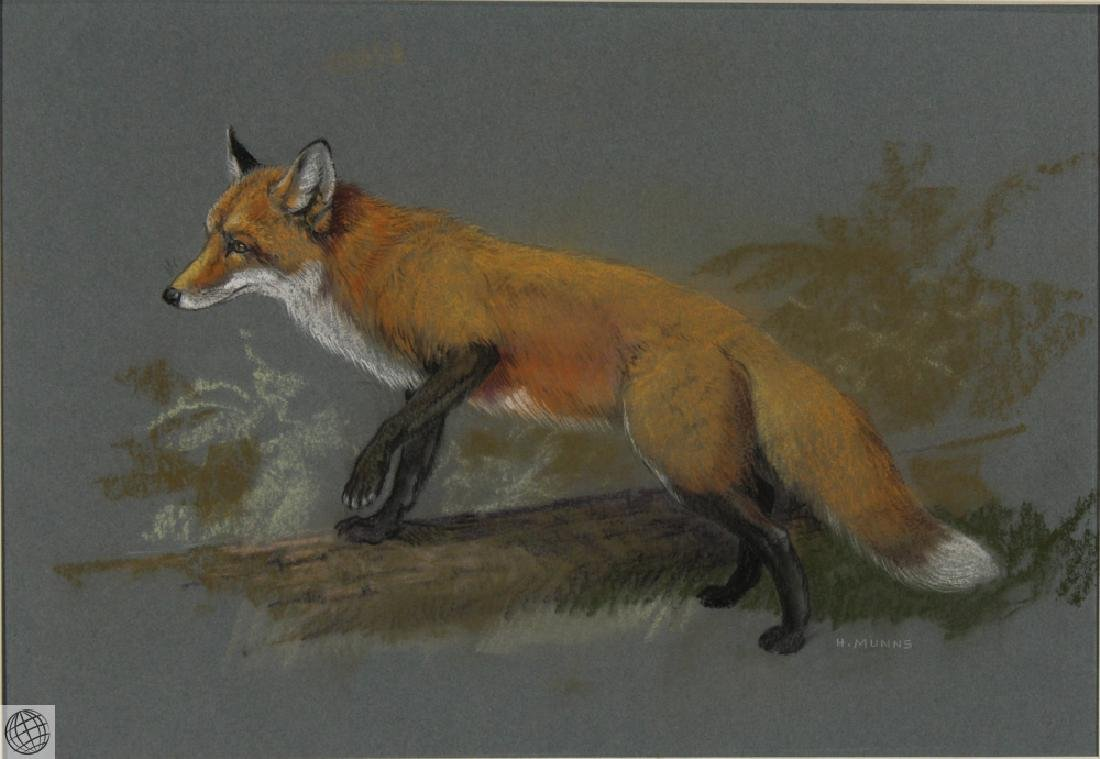 Red Fox HOWARD L. MUNNS Original Pastel Portrait 1971 - 2