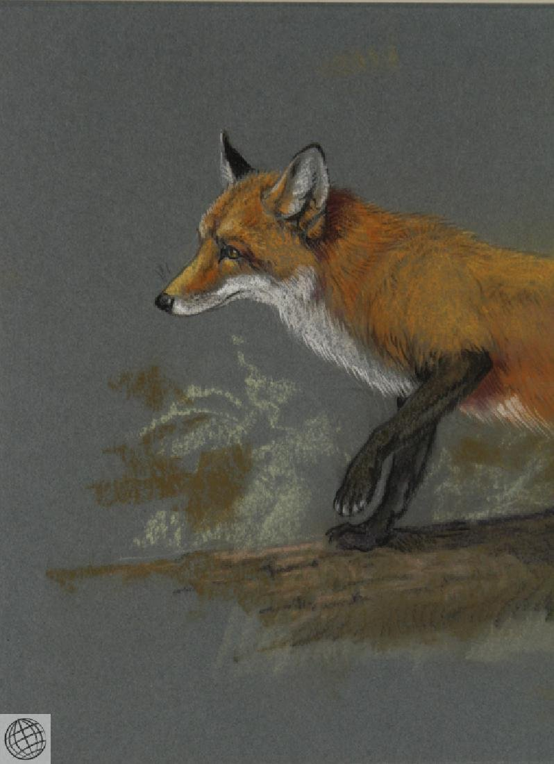 Red Fox HOWARD L. MUNNS Original Pastel Portrait 1971 - 3
