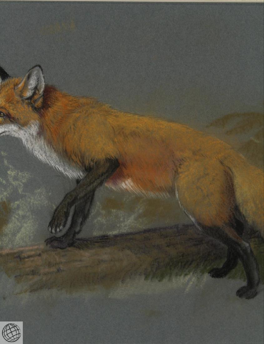Red Fox HOWARD L. MUNNS Original Pastel Portrait 1971 - 4