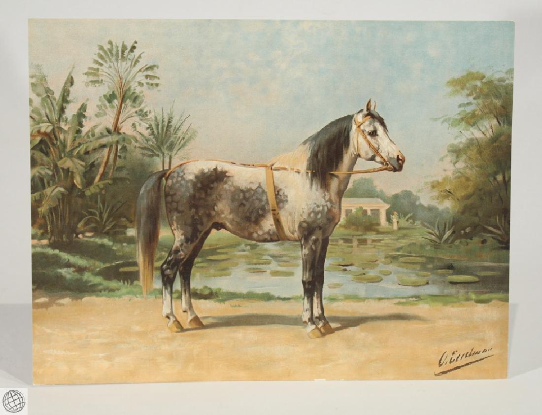 Sandlewood OTTO EERELMAN Color Lithograph Goffart Horse