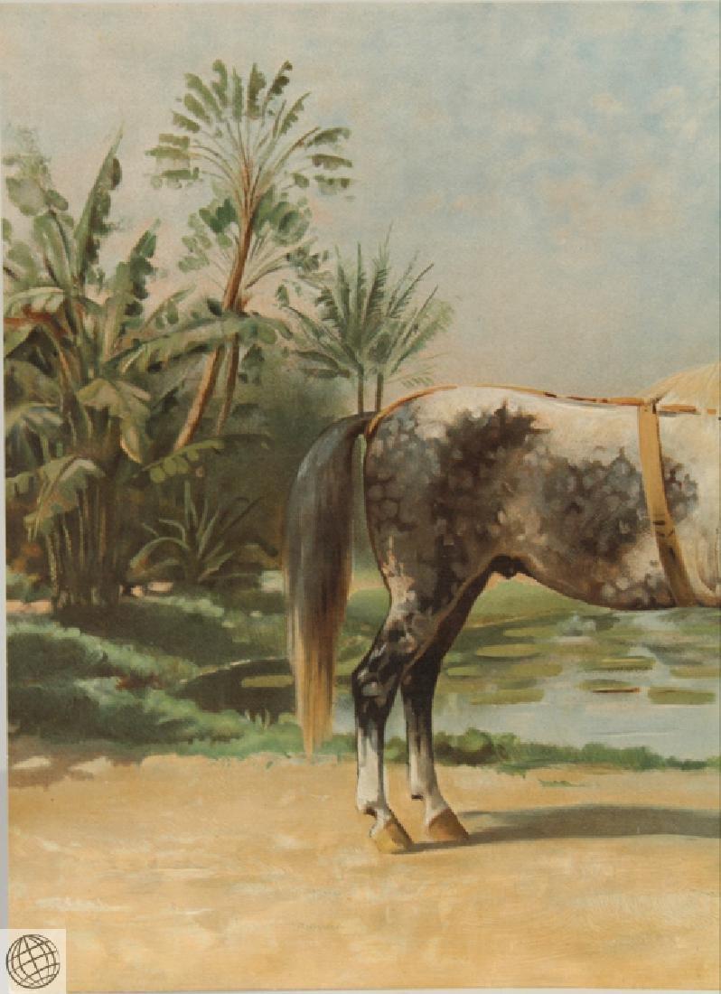 Sandlewood OTTO EERELMAN Color Lithograph Goffart Horse - 2