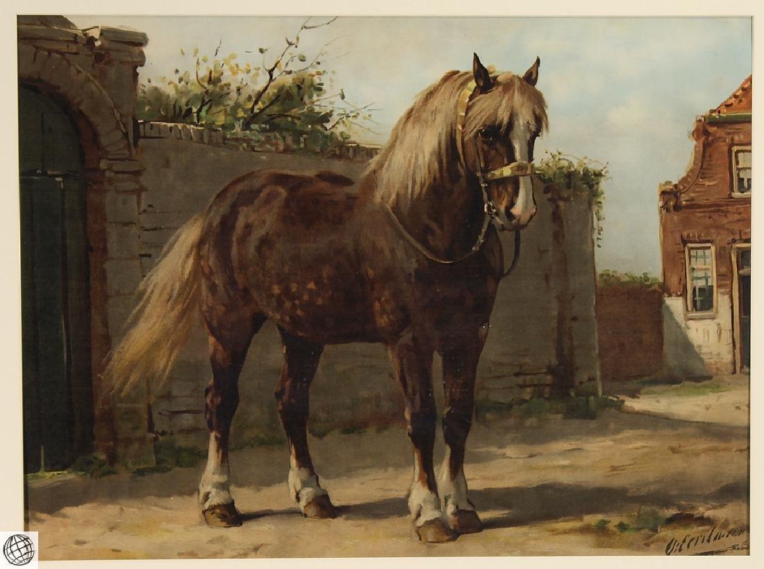 Zeeland Horse OTTO EERELMAN Color Lithograph Goffart - 2