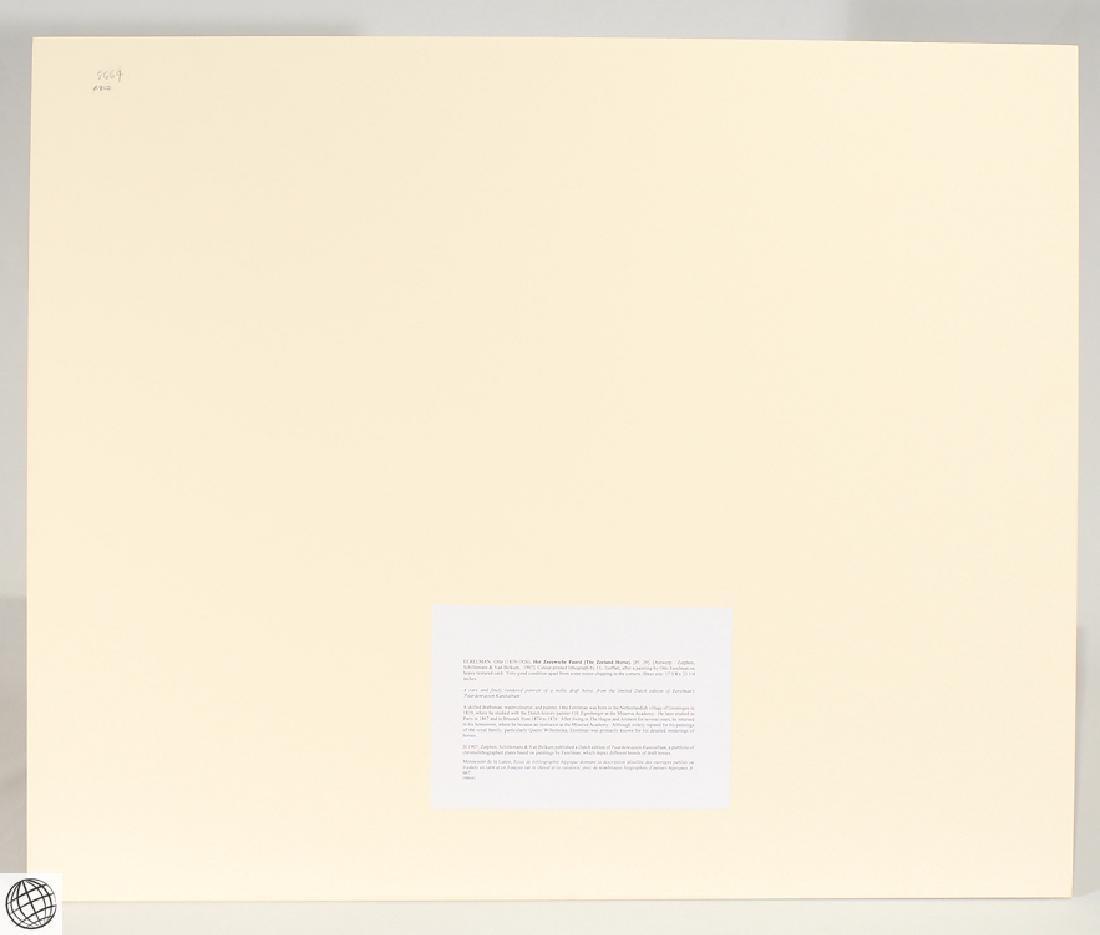 Zeeland Horse OTTO EERELMAN Color Lithograph Goffart - 6