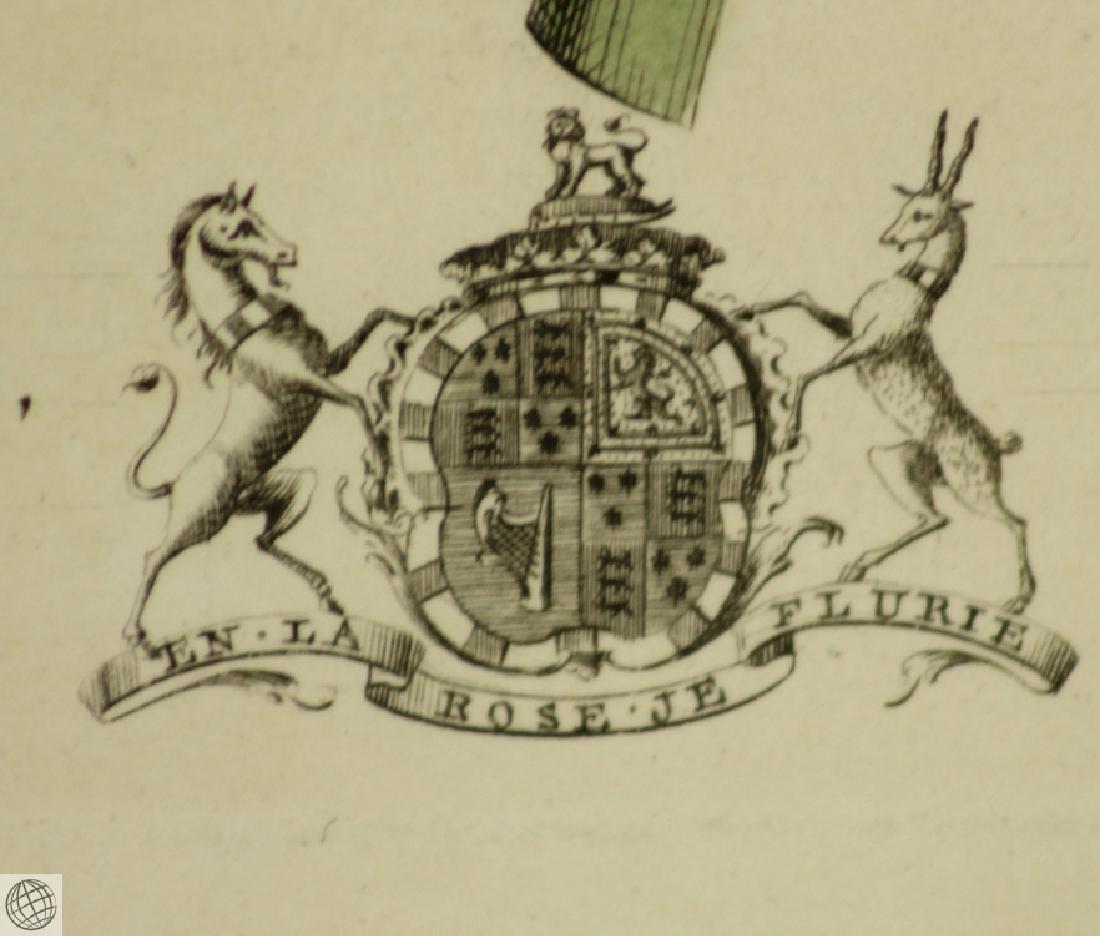 The Pine Apple GEORGE DIONYSIUS EHRET 1750 Copper - 7