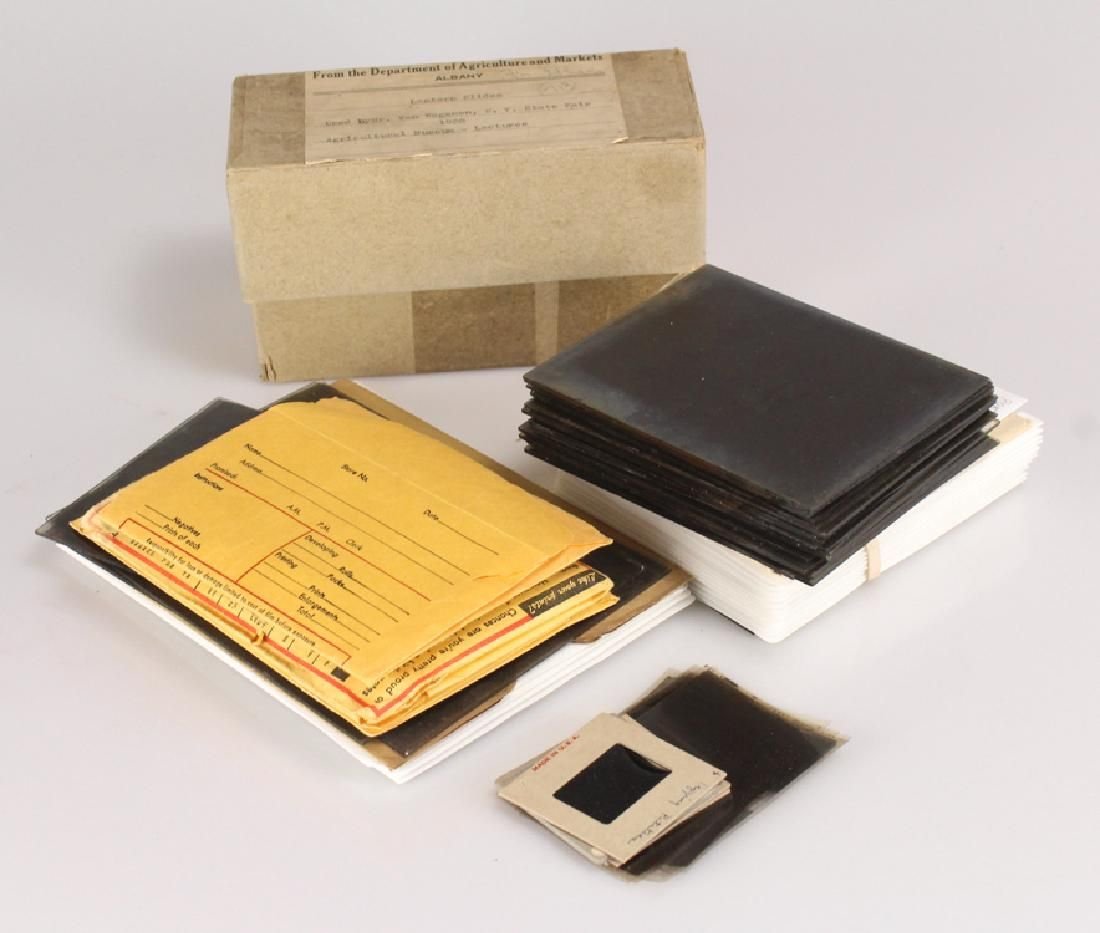 Large Collection VINTAGE/ANTIQUE NEGATIVES & LANTERN
