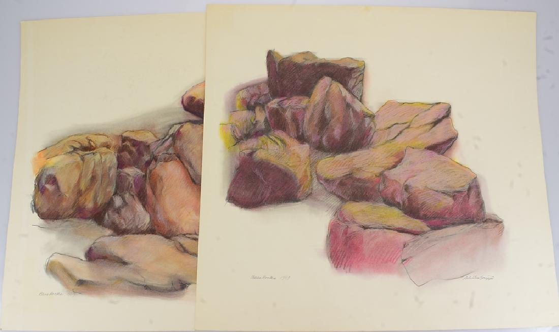 2pcs Pastel Colored Pencil SALVATORE GRIPPI