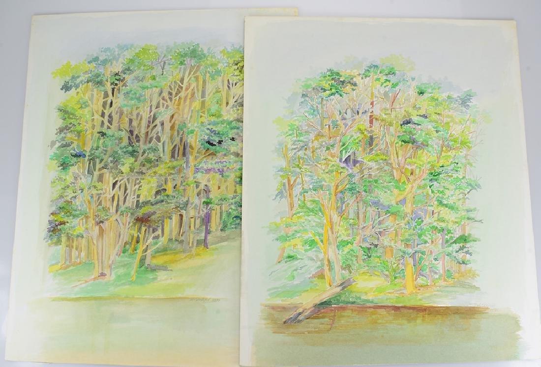 2pcs Original Watercolor Landscapes SALVATORE GRIPPI