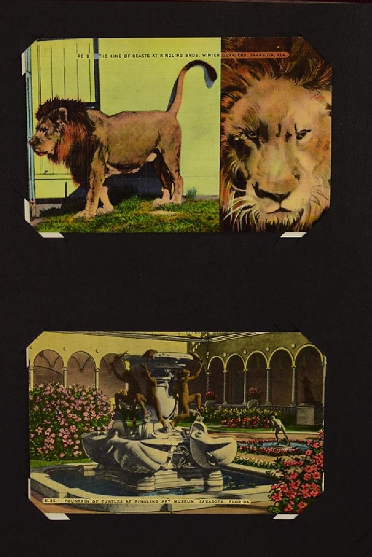 Circus Post Cards ANTIQUE VINTAGE & MODERN COLLECTIBLE - 10