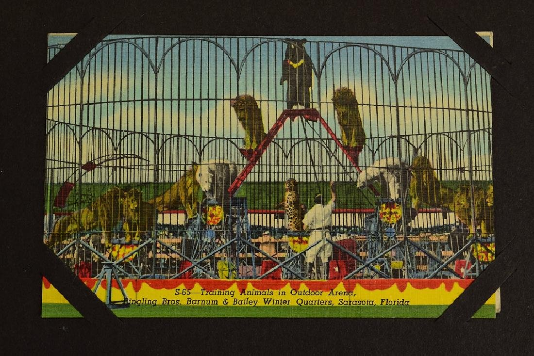 Circus Post Cards ANTIQUE VINTAGE & MODERN COLLECTIBLE - 2