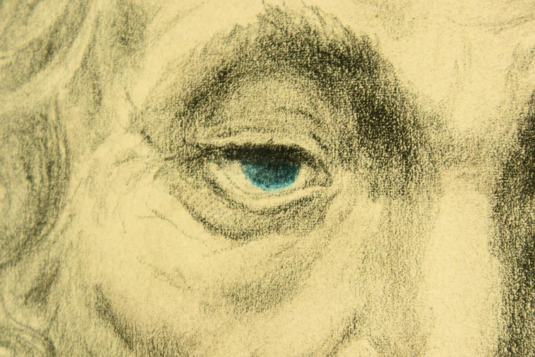 Irving Weinstein RABBI PORTRAIT c1960 Hand-Colored - 7