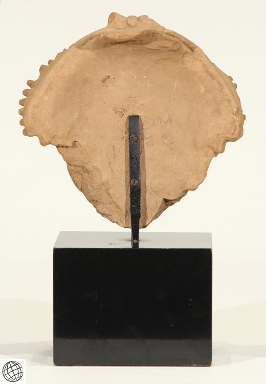 Pre-Columbian Art ANTIQUE REMOJADAS CERAMIC FIGURE - 3