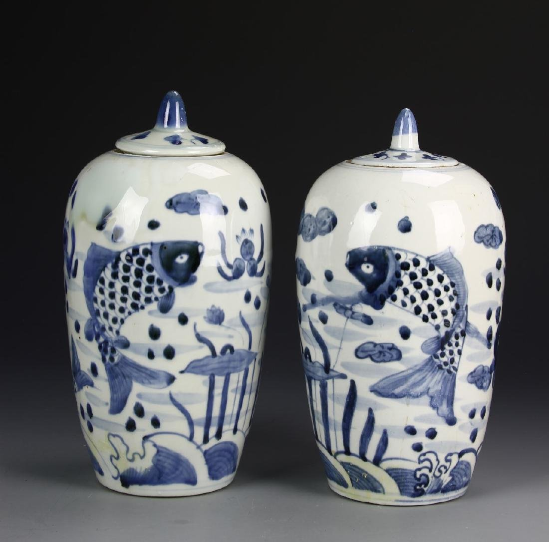 Chinese A Pair Of Blue And White Vases