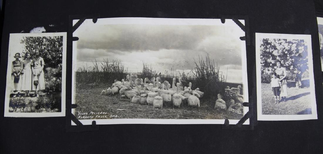 Photograph Album - 3