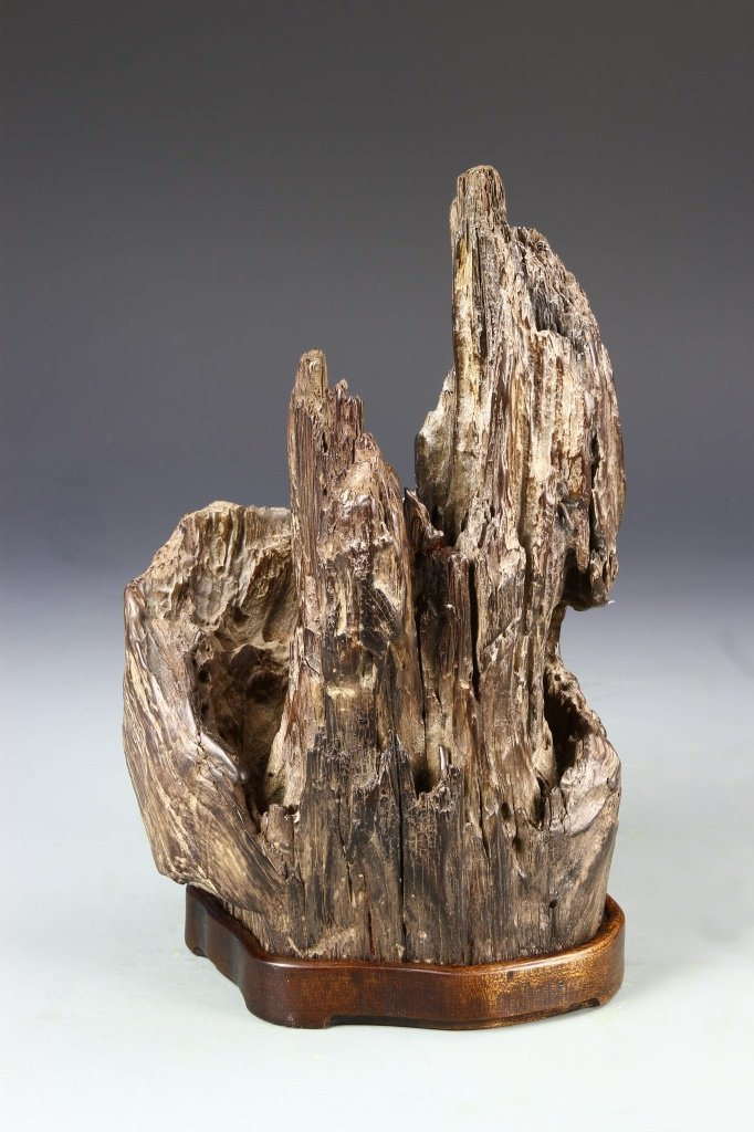Chinese Wood Boulder