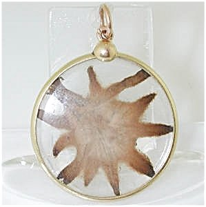 371580: RECENT 18K FRENCH DRIED EDELWEISS PENDANT