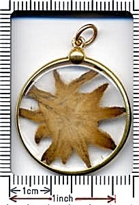 371580: RECENT 18K FRENCH DRIED EDELWEISS PENDANT - 2