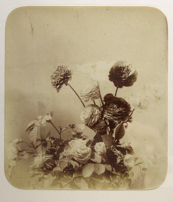 1013: ADOLPHE BRAUN (French) Vintage albumen print