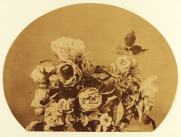 1014: ADOLPHE BRAUN (French) Vintage albumen print