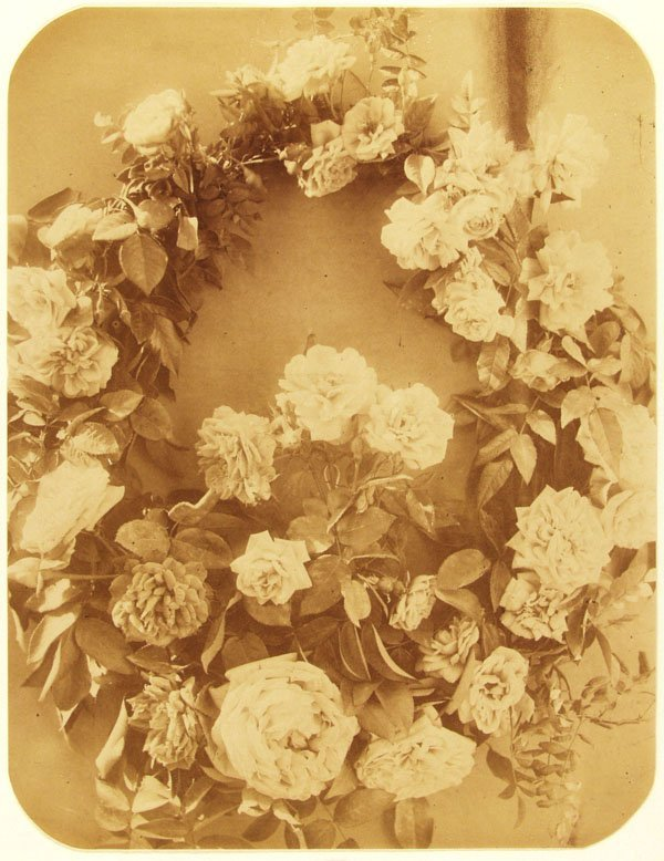 1016: ADOLPHE BRAUN (French) Vintage albumen print