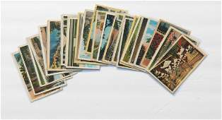 25 Pc A EARLY FLORIDA BORDERED POSTCARDS