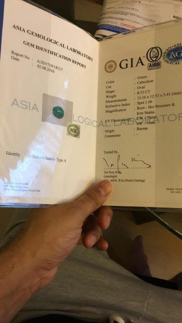 Natural Burma Jade 8.53 Cts - Certified - 2