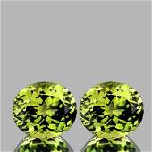 Natural  AAA Canary Green Mali Garnet Pair
