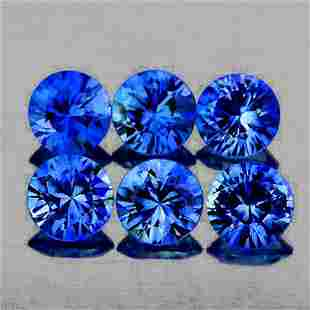 Natural AAA Ceylon Blue Sapphire 7 Pcs[Flawless-VVS]
