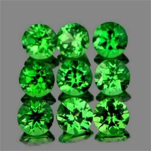 Natural Chrome Green Tsavorite Garnet 9 Pcs{VVS}