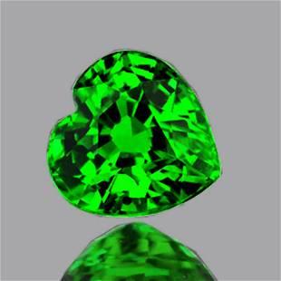 Natural Emerald Green Tsavorite Garnet {Flawless-VVS}