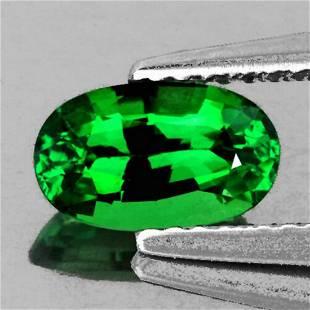 Natural Emerald Green Tsavorite Garnet 1.04 Cts - FL