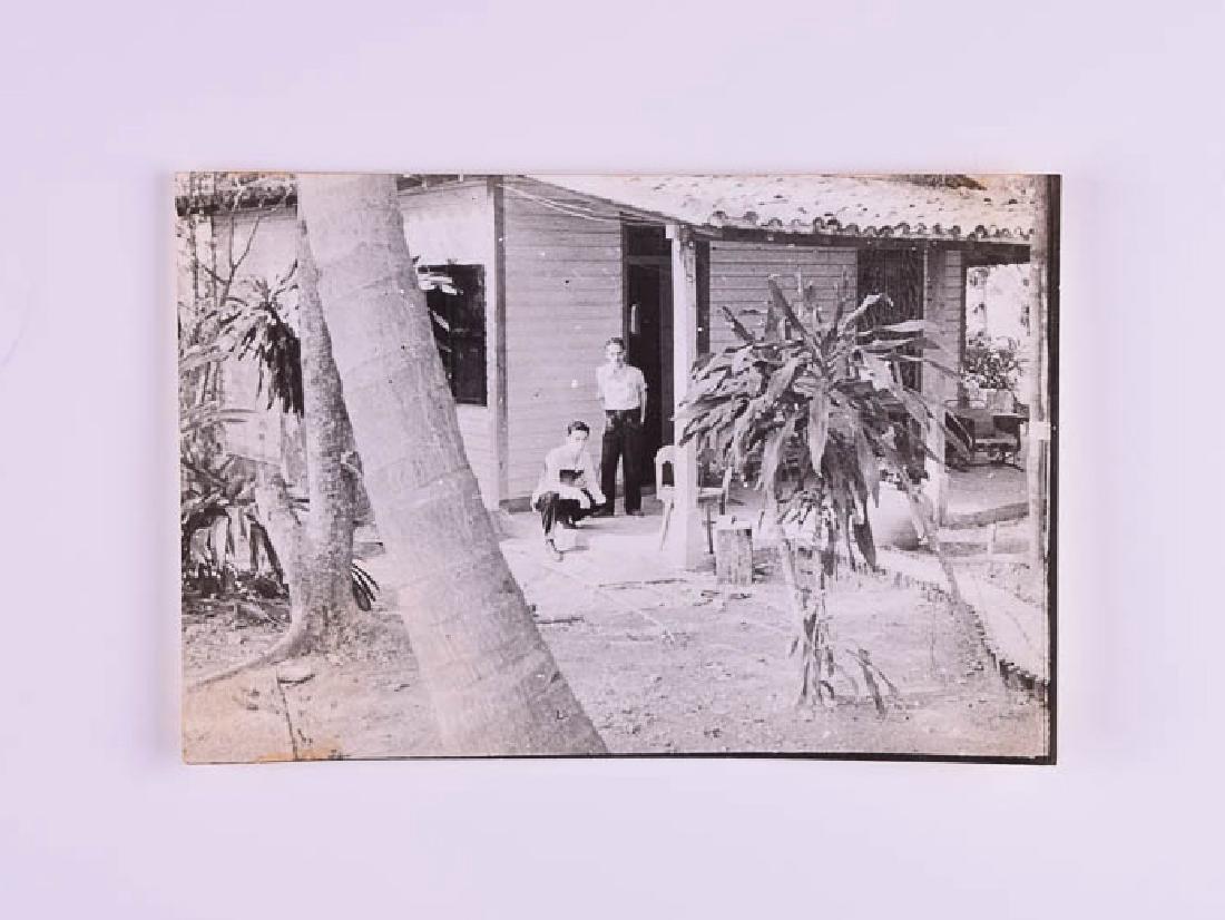 Carlos Enriquez - Backyard