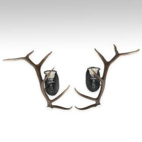 Pair Faux Elk Antler Wall Sconces