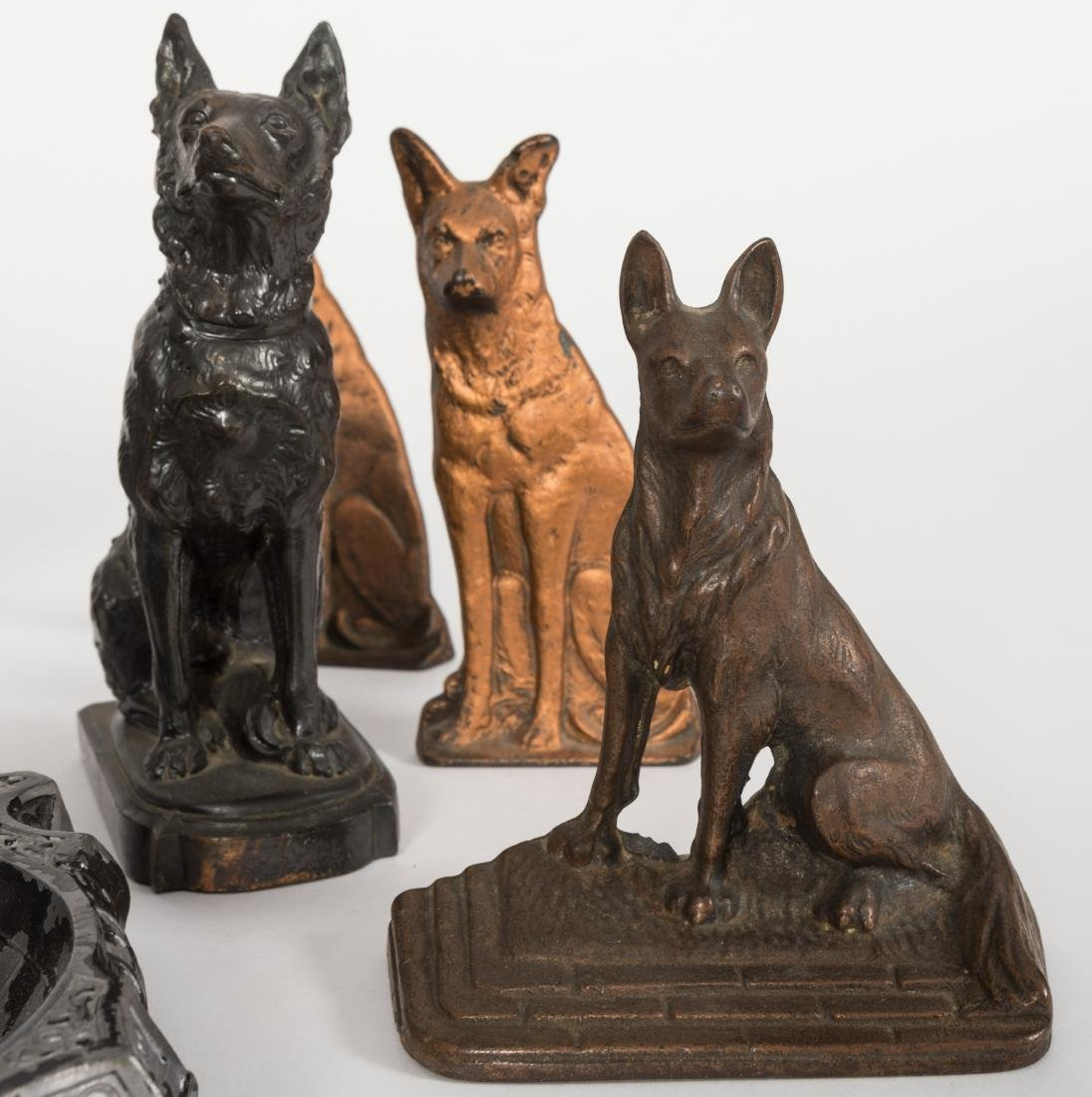 Group of Eight Canines - 4