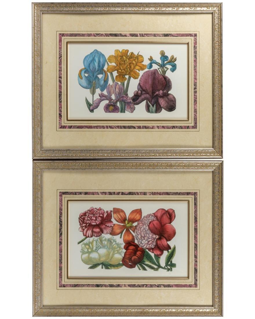Four Botanical Prints - 3