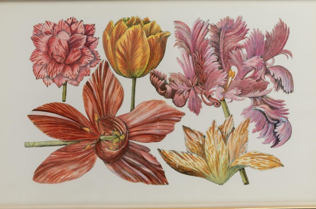 Four Botanical Prints - 5