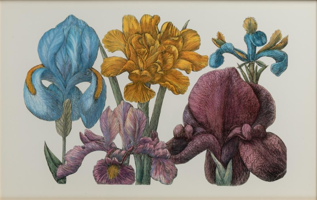 Four Botanical Prints - 7