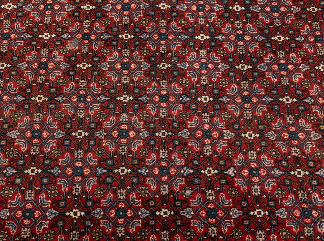Oriental Rug - Blue and Red Border - 2