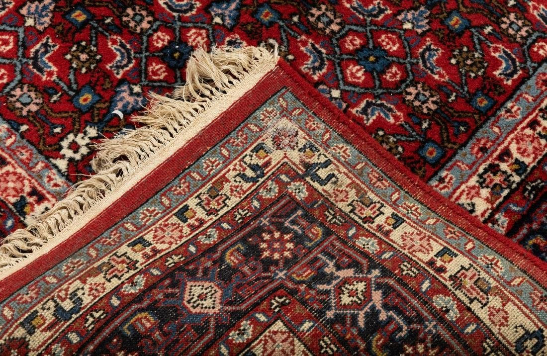 Oriental Rug - Blue and Red Border - 4