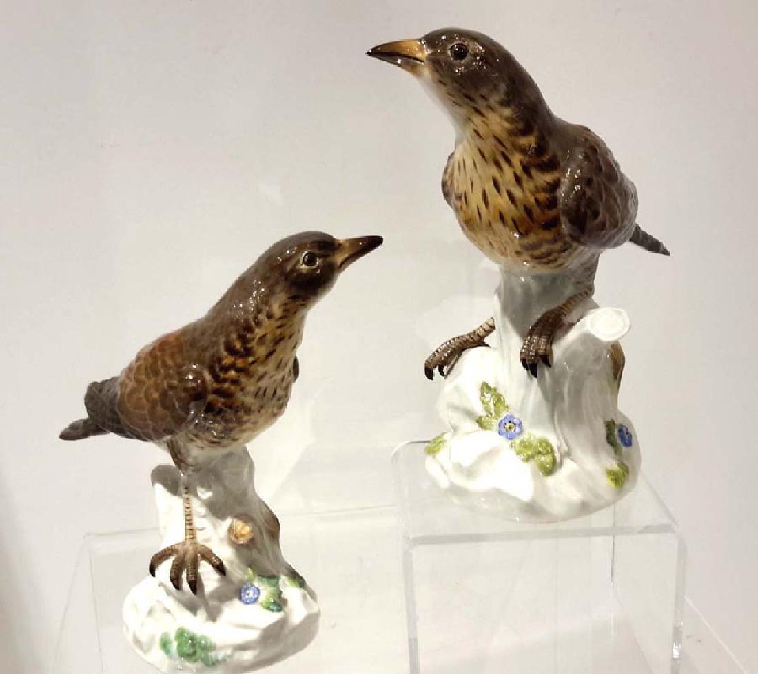 Pair of Meissen Porcelain Models of Fieldfare Birds,
