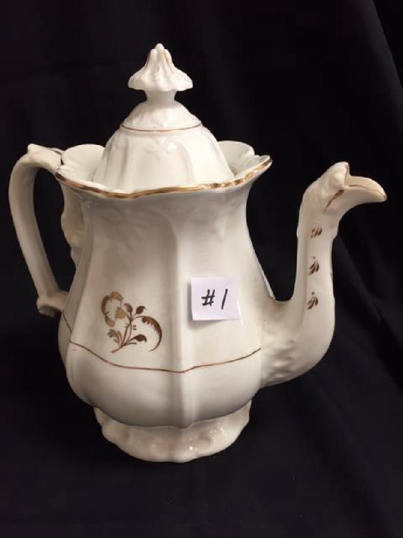 19th Century Morning Glory  Porcelain Coffee Pot