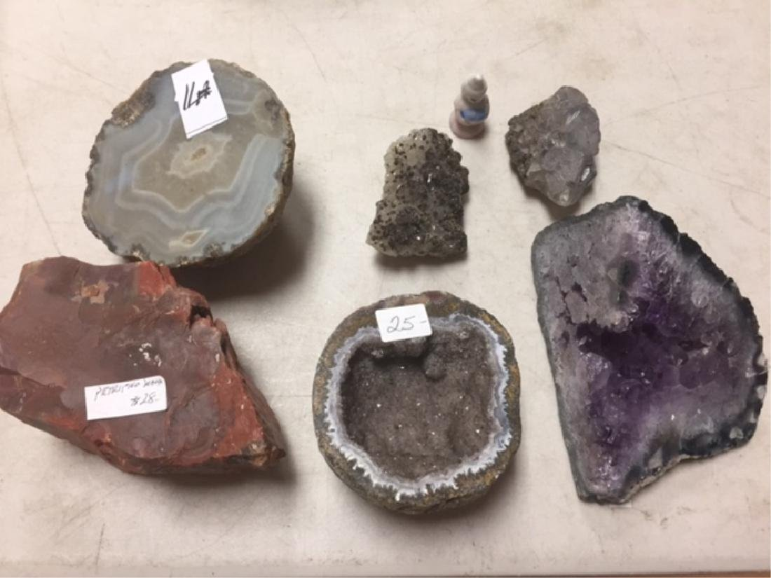Geode / Petrified Wood / Crystal Lot