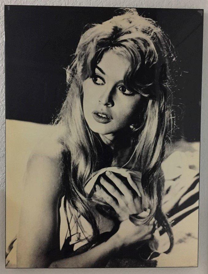Brigitte Anne-Marie Bardot  Large Acrilyc Photo